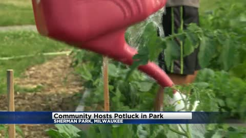 Neighbors come together for community-wide potluck held in Milwaukee's Sherman Park