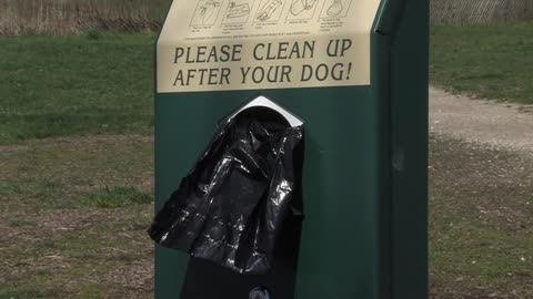 Local veterinarian warning about illness caused by bacteria found in dog waste
