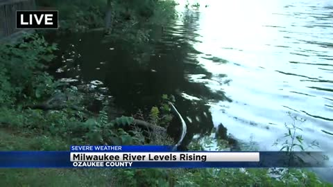 Waiting for a drastic drop in the Milwaukee River