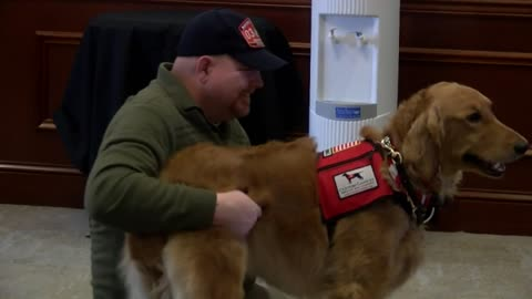 """He's going to get me out and normal again:"" Local Marine surprised with service dog named Tango"