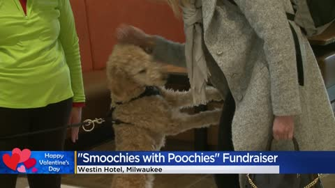 Animal lovers celebrate Valentine's Day at 'Smoochies with...