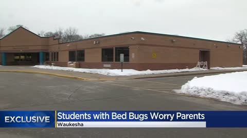 Parents worried after bed bugs found on students at a Waukesha...