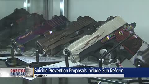 Wisconsin suicide task force reverses course on proposal