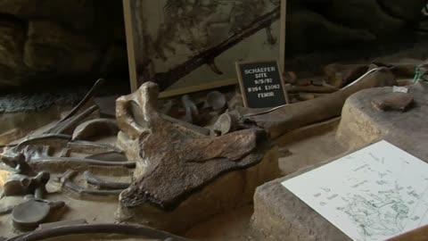 Mammoth discovery still impacting Kenosha County more than 50 years later