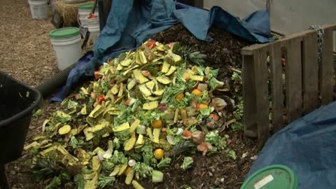 UWM puts student waste to good use in campus garden