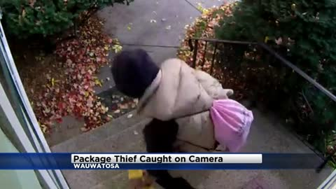Camera catches thief taking package from porch in Wauwatosa