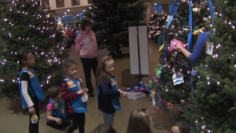 Youth Groups decorate Christmas trees at the Milwaukee County Zoo