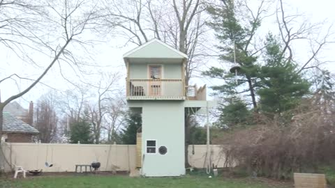 Kenosha couple forced to either rebuild or tear down treehouse...