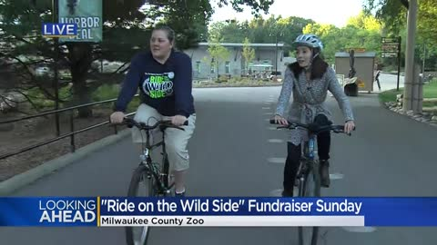 Visitors invited to take a 'Ride on the Wild Side' through Milwaukee County Zoo this weekend