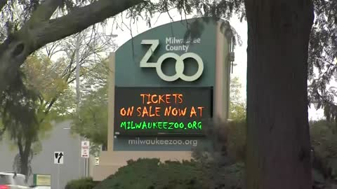 One needs stitches after woman attacks three other women at Milwaukee County Zoo