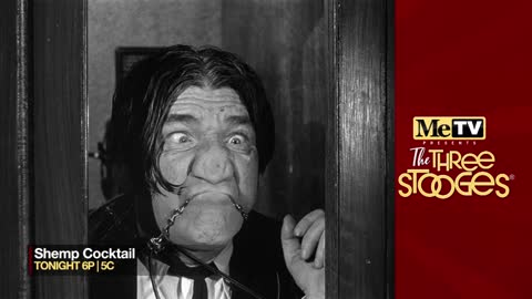 MeTV presents The Three Stooges ''Shemp Cocktail'' on...
