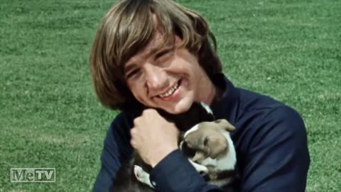 Gonna Buy a Dog by The Monkees