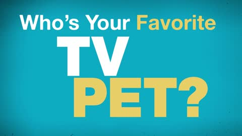 Who's Your Favorite TV Pet?