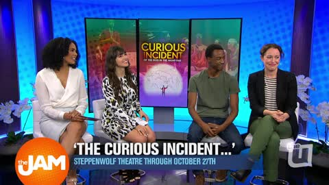 Steppenwolf Theatre Presents 'The Curious Incident…'
