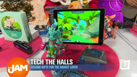 Gadgets for Gifts with Steve Greenberg