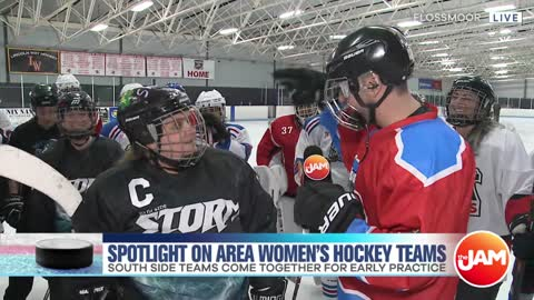 Spotlight on Area Women's Hockey Teams