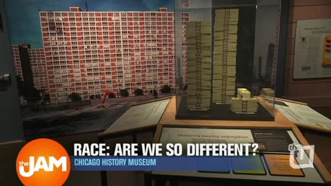Chicago History Museum Exhibit | RACE: ARE WE SO DIFFERENT?