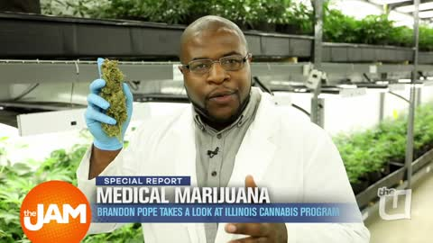 A Look Inside The Medical Marijuana Industry