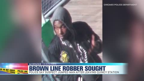 Search for Brown Line Robber